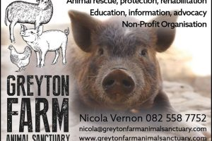 Greyton Farm Animal Sanctuary